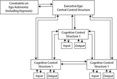 Theories of Hypnosis Hypnosis Scripts