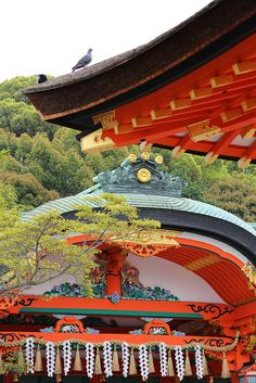 Nature and the spiritual life: Fushimi Inari Shrine Kyoto Japan