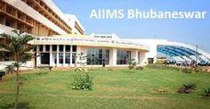 AIIMS Bhubaneswar Recruitment 2017 - 72 Junior Residents Posts Notification, Interview Date, Reader Check AIIMS Bhubaneswar Junior Residents Notification
