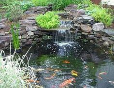 52 Beautiful Backyard Ponds and Water Garden Landscaping Ideas