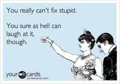 Funny Thinking of You Ecard: You really can't fix stupid. You sure as hell can laugh at it, though.