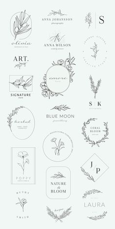 Botanical logos & illustrations by Crocus Paperi on Creative Market