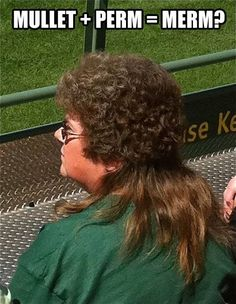 Ladies and Gentlemen, I have found my new hairdo...The Merm. A perm and a mullet got together, had a baby, and birthed this gloriousness.