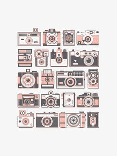 A neatly organized collection of 20 vintage cameras simplified down to shapes and two colors. We have the whole collection in there from Kodak to Olympus in neat rows.