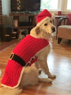 Dog Santa Suit Santa Dog Sweater Dog Santa by LoveandPetFurCrochet Crochet Santa Hat, Crochet Dog Sweater, Dog Crochet, Afghan Crochet, Christmas Animals, Christmas Dog, Dog Christmas Outfits, Matching Ugly Christmas Sweaters, Puppy Hats
