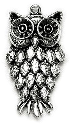 Love #owls? Us too! Isn't this necklace charm cute? $3.39