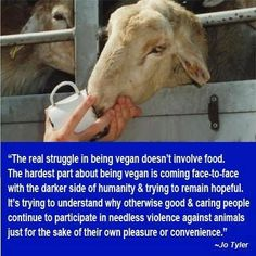 It does make you wonder WTF when so many people  are aware of the horrors and the suffering and continue to eat meat.