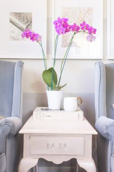 Home Office Design Studio With Fresh Orchids Fuchsia Grand Rapids MI Interiordesign