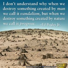 I don't understand why when we destroy something created by man we call it vandalism, but when we destroy something by nature we call it progress. (Ed Begley, Jr. Ed Begley, Jolie Phrase, Save Our Earth, I Dont Understand, Think, Statements, Mother Earth, Mother Nature, When Us