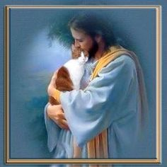 Jesus: if he didn't love cats, then he's not worth worshiping. Crazy Cat Lady, Crazy Cats, Yorkshire Terrier, I Love Cats, Cute Cats, Animals And Pets, Cute Animals, Pet Loss Grief, Animal Gato