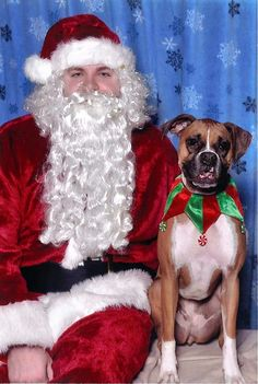 Snaggle Foot Dog Walks and Pet Care - Round Lake, IL: Where To Get Pet Pictures With Santa In Chicago An...
