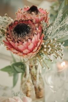 Wedding Flower Arrangements - I have to send out a big fat thank you to the wedding world for introducing me to protea. These gorgeous, statuesque botanical beauties have been popping up in the most chicest of weddings and this . Deco Floral, Arte Floral, Floral Design, Protea Flower, My Flower, Protea Bouquet, Flower Mandala, Ikebana, Fresh Flowers