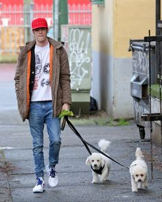 Grant Gustin takes his dogs for an early morning walk the day of his 26th birthday.