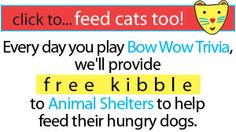 Click on an answer, and every day you do, they'll provide 10 pieces of kibble to Animal Shelters to help feed their hungry dogs. Play Bow-Wow Trivia every day - the more you play, the more kibble for the dogs!