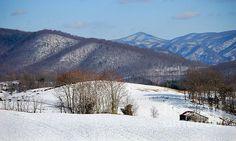 Cattle farm in the Blue Ridge Mountains of VA.