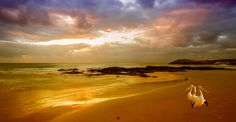 Evening - A digital composite of Friendly Beaches. An evening time location in Tasmania, Australia