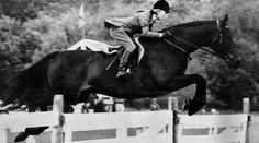 <p>Marianne Taylor shares the story of one of the great Working Hunters of all-time, Navy Commander and how Mrs. Betty Oare (née Reynolds) got the ride on this legendary Thoroughbred.</p>