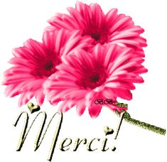 * Gifs Merci * - (page - Tubes de Luscie Thank You Wishes, Thank You Greetings, Thank You Cards, Gif Animé, Animated Gif, Merci Gif, Bisous Gif, Thank You Card Template, Tank You