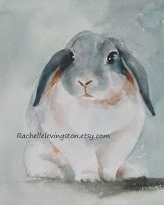 White Lop Earred Watercolor Bunny artwork by rachellelevingston, via Etsy.