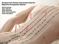 Acupuncture Points for IBS Back new - great to follow these lines in crystal therapy with a wand