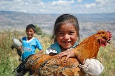 El Salvador - Reminds me of me as a little girl in El Salvador with my chickens :)