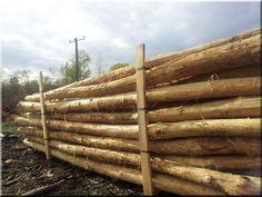 akácfa karámfa, akác oszlop Wood, Woodwind Instrument, Timber Wood, Trees