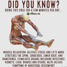 Back Exercises, Stretching Exercises, Stretching Benefits, Flexibility Stretches, Massage Benefits, Yoga Moves, Pilates Yoga, Workout Exercises, Pilates Reformer