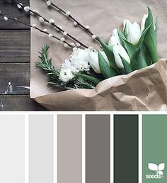 foxy tones | design seeds | Bloglovin'