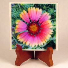 Blanket Flower 0044C Handmade Coaster Photo by PhotographyByRoger