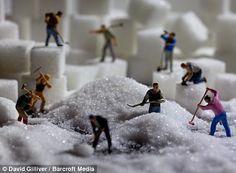 People seen shovelling sugar in his piece Granulating Sugar...
