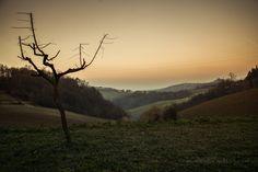 monica r travelblog   colli bolognesi