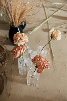 dried flowers in small vintage glass bottles. Flowers Nature, Dried Flowers, Fresh Flowers, Beautiful Flowers, Wabi Sabi, Branches, Pot Pourri, Turbulence Deco, Deco Nature