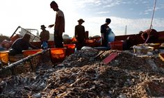 The company has won plaudits for its admission of forced labour in the Thai seafood industry but much of the supply chain remains hidden
