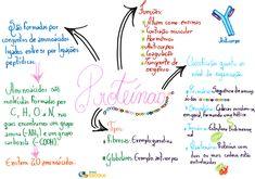 School Study Tips, Study Notes, Summary, Biology, Dna, High School, Medicine, Mindfulness, Journal