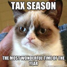 Grumpy Cat 1 - tax season the most wonderful time of the year