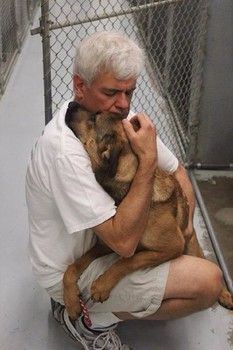 Touching photo leads to multiple rescues from animal control - Please Keep Fighting for Them All - Wherever You Live Share Your Local Shelter Animals - Volunteer On Their Behalf - Help Them Find A Home Before They are Killed.