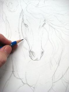 Excellent Drawing Faces With Graphite Pencils Ideas. Enchanting Drawing Faces with Graphite Pencils Ideas. Doodle Drawing, Drawing Sketches, Painting & Drawing, Drawing Tips, Best Drawing, Sketching, Horse Drawings, Animal Drawings, Cool Drawings
