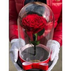 Gorgeous dome with rainbow red rose . Delivery worldwide! Contact us: contact@buchetino.com .   The rose is eternal and we guarantee that the rose will last for at least 3 years.