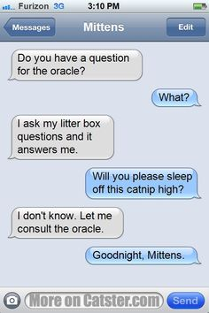 #textsfrommittens Weekend Flashback: The Oracle Edition www.textsfrommittens.com