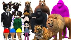 Learn Wild #Animals In Outdoor #Playground For Kids #Finger Family #Rhymes For Compilation