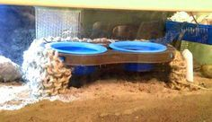 Turn a pet food bowl holder into a pool deck for your hermit crabs! #DIY - PetDIYs.com