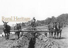 Courtesy: Rural Heritage. Cedar Rapids, IA (USA)