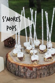 Let's Celebrate // DIY S'mores Pops for a Camping Party