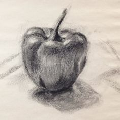 Charcoal drawing of a pepper by Jessica Ivins