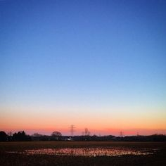 The crystallising sky is pink and oran in thebare #mud field.field #stubble #clouds #sky  #reflection #puk#beautifulge - it's reflection drops like burning jewels  #romance #live #love #snow #distant #layers #colours #landscape #English #view #scene #bucolic #pastoralddle  Snow is coming. #snow #sunset #pin