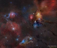 Rho Ophiuchi Wide Field