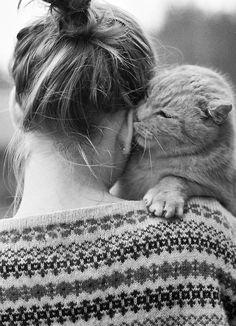 Just some kitty lovin