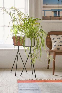 Tripod Plant Stand - Urban Outfitters. Only stand; use your own pot