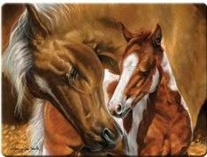 """MARE & FOAL"" TEMPERED GLASS CUTTING BOARD"