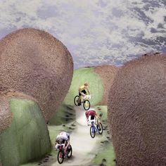 | Kiwi Downhill |